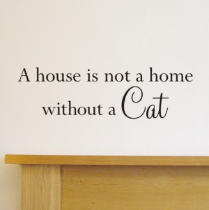a-house-is-not-a-home-without-a-cat-wall-quote-sticker-h554k-11491-p